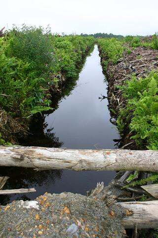 drainage-1519345-1600x2400.jpg